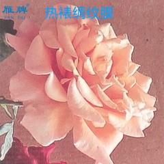 雁牌25寸特惠热裱绸纹膜2817影楼后期工厂热裱膜婚纱相片照片写真海报热裱膜