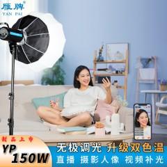 雁牌150W双色温LED摄影灯专业直播间抖音视频常亮灯球形灯补光灯